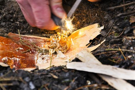 Bushcraft and Survival Skills - October