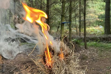 Outdoor Education Fire